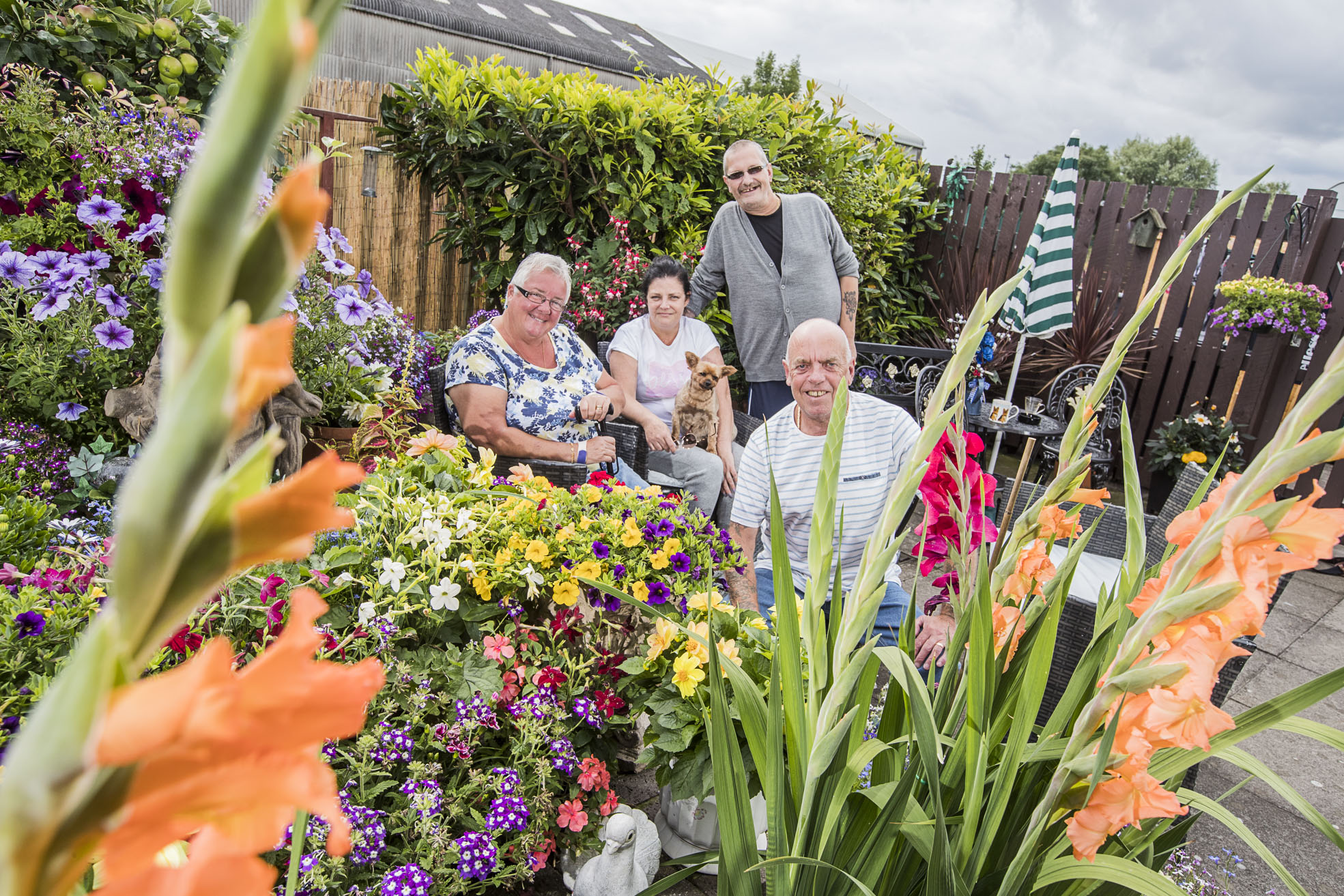 Green-fingered Cartrefi Conwy tenants dig their way to victory