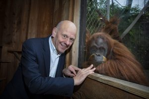 The chairman of Care Forum Wales, Mario Kreft with one of the Orangutans at Chester Zoo.