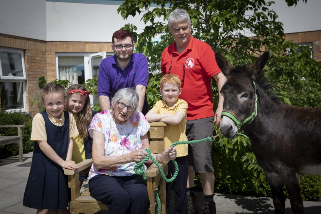 Donkey duo help Peggy and pupils get crafty
